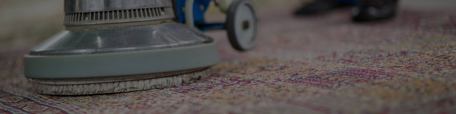 Carpet Cleaning Near Me American Carpet Cleaning