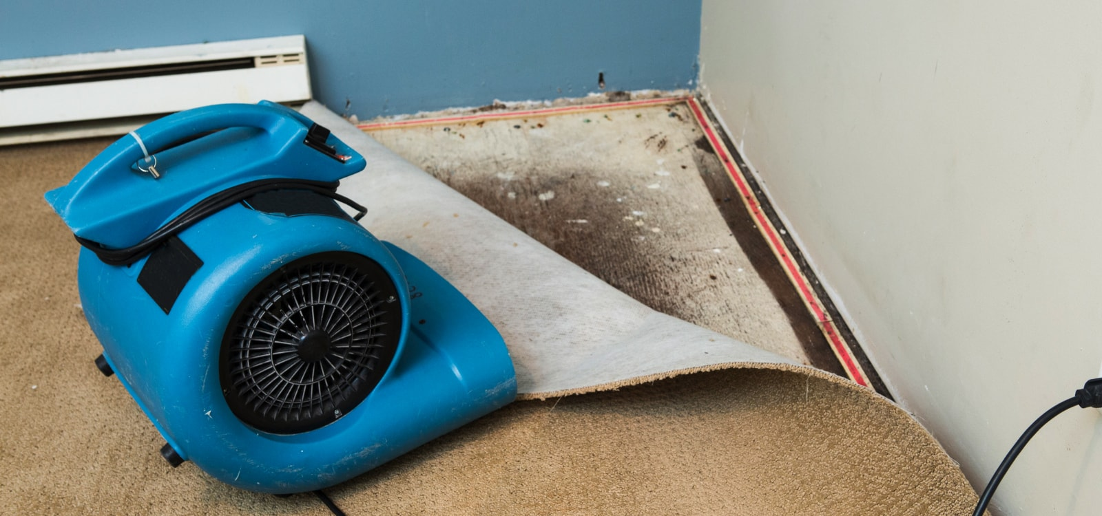 drying carpet after carpet cleaning service