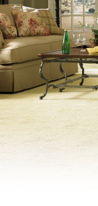 Allentown Carpet Cleaning Services